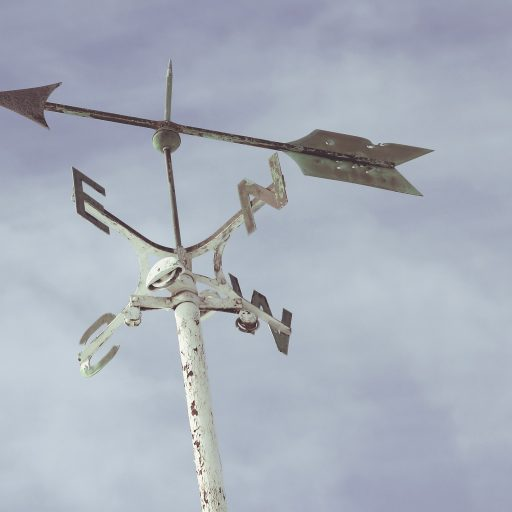A weather vane as a metaphor for the direction of Oregon's Future