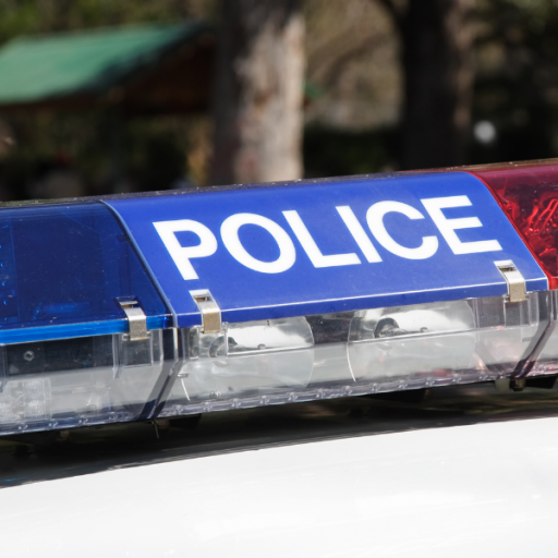 Image: police lightbar